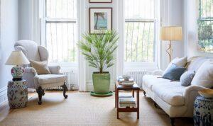 plante verzi - amenajare apartament pe 2 nivele
